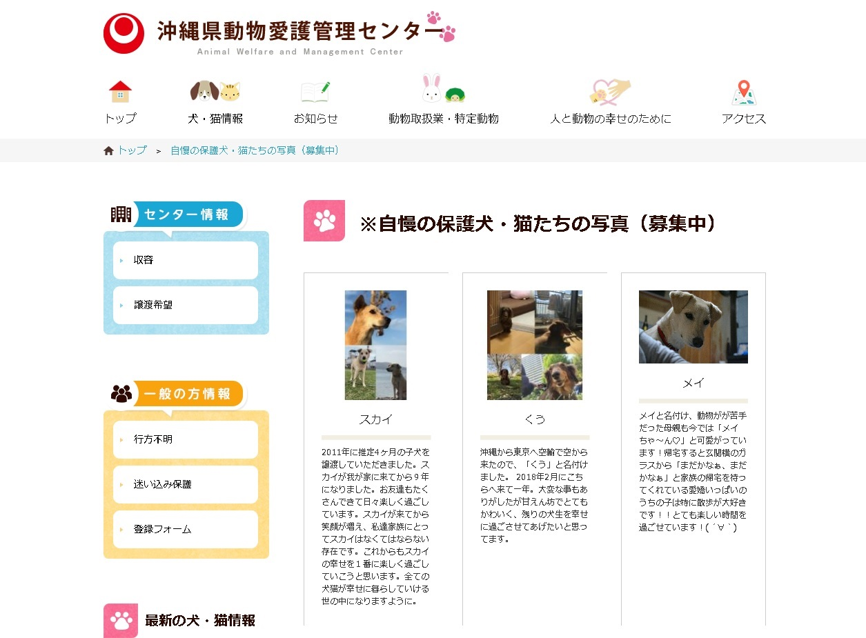 okinawa dog center hp